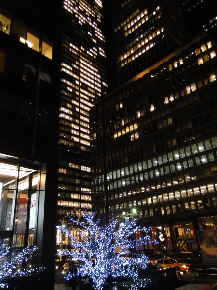 Tour noturno Lights of Holiday Tour New York Manhattan