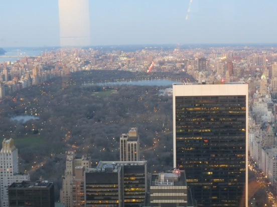 Vista do Central Park do Top of the Rock  Rockefeller Center New York