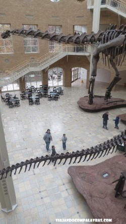 The Great Hall com dinossauros Fernbank Museum, Atlanta, Geórgia