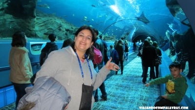 Georgia Aquarium, Atlanta, Geórgia