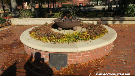 Eternal Flame Martin Luther King Historic Site, Atlanta