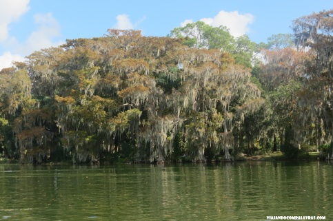 Winter Park Scenic Boat Tour