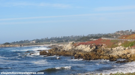 The Lone Cypress, 17 Mile Drive, Carmel, Califórnia